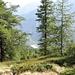 Könnte auch Kanada sein... das schöne liegt aber oftmals viel näher. Mäander der Maggia.