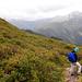 Zur Alpenrosen-Blüte sicher ein Traum