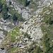 Alpe in atemberaubender Lage