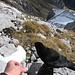 Gipfeljause mit Alpendohle