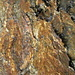 fast wie Baumrinde - Fels auf dem W-Grat der Tschingelhörner