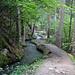 Nach Icogne geht es wieder gemütlich durch den Wald
