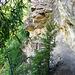 Schön in die Felsen gehauen