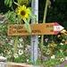 So sehen übrigens die Wegweiser im Vinschgau aus.. meistens ohne Sonnenblume! ;-)