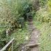 der Weg oberhalb Obertimpel