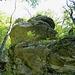 Typischer Kalk-Felskopf am Südsporn, von Westen her gesehen.