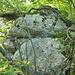 Der erste grosse Felskopf, von Osten her.