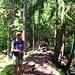 Die Torrent-Neuf Suon führt anfangs durch schöne Waldstücke