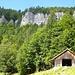 Schöne Felsen inmitten (noch) grüner Wälder