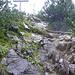 Gipfelaufbau und Kreuz Hahnenköpfle<br /><br />(leichte Kraxelei, max. I)