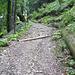 steile Fahrstraße zum Oytalhaus