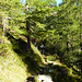 Il sentiero Foppa/Cusie' - Quarnei