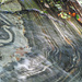 Venature della roccia a Ponte di Forno