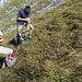 Edu und Herbert im steilen Gras