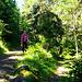 """Auf dem Baum zwischen den Pfaden kann man einen versteckten Wegweiser entdecken. Wir gehen hier nicht nach rechts Richtung """"Gillou d'en Bas"""" und """"Ayer"""", sondern geradeaus (kein Wegweiser, aber auf einem Baum markiert)"""