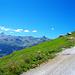 Im Abstieg von Nava Secca zur Barneuza Alpage auf der Fahrstrasse