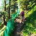 Diese Absicherung ist für den Berglauf Sierre-Zinal angebracht, der hier vorbei führt. [u Pfaelzer] und [u Steinlaus] sind in 2008 auf diesem Pfad nach unten gerennt. Die Nachricht findet man [http://www.hikr.org/tour/post21726.html hier].<br /><br />Es muss ein tolles Erlebnis sein um in dieser Umgebung einen Berglauf zu machen, aber es ist auch ein wenig dumm um nicht die Zeit zu nehmen um die herrliche Landschaft und Aussicht zu geniessen!:)