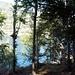 Costeggio il Lago Delio lungo la costa Est....