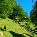Der schöne Wanderweg zum Ort Obern/Oberu. Grüner und blauer gibt's nicht! Im Herbst muss es hier auch sehr schön sein, siehe [u akka]'s [http://www.hikr.org/tour/post11187.html Tourenbericht]