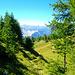 Der Mountainbikeweg, gesehen vom Aufstieg zum Horlini