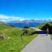 Auf dem Fahrweg zurück nach Obern/Oberu. Vielleicht etwas langweilig, aber immer noch mit schöner Aussicht!