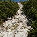 Kraxel-Schneise Richtung Gipfel
