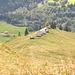 Zoom vom First zu den Wildheuerhütten hinab.