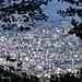 Lugano aus dem dichten Buchenwald im Aufstieg zur Alpe Bolla