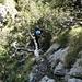 Aufstieg zum Sasso Grande: Legföhren als Aufstiegshilfe