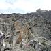 Hochstubaihütte über unwegsamen Gelände mit vereinzelten Kraxelstellen
