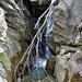 Wenig Wasser im Jolibach
