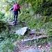 Il sentiero sale (e parecchio) con molti tornanti