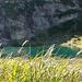 Lago d' Efra