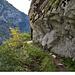Nach einem kurzen Wäldchen geht es hinaus in die erste Felswand