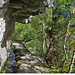 Talseitig scheinbar Wald - in Wirklichkeit steiler Fels