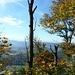 wunderschöne Ausblicke vom Weg zum Burghorn