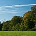 Waldrand mit zaghafter Herbstverfärbung<br />