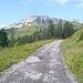 erste Blicke auf das Felsmassiv des Hohen Ifen