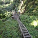Ladders down to Tsusiat Falls (km 25)