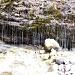 Die Triefen im Hinterthal gelten schon seit langem als Naturwunder und wurden deshalb auch im Jahre 2001 zum Naturdenkmal erklärt.   Ein horizontaler Quellaustritt speist über einer wasserundurchlässigen Gesteinsschicht einen etwa 100 m breiten Wasserfall, der sich aus etwa 2-3 m Höhe über eine Quelltuffbildendende Moosschicht als triefender Tropfenvorhang in den Urslau-Bach ergießt.