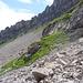 die Geröllquerung zum Normalweg und dem Einschnitt ins Felsenriff