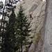 Gipfelplatte Spizi Flue 25m hoch II+