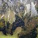 Herbst auch im Justistal, im rechten drittel Der untere Teil vom Bärenpfad