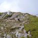 typische Alpendohlen am Ifengipfelkreuz