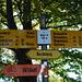 Neckisch: Im Neckertal werden die Wanderwege durch den Zivilschutz unterhalten