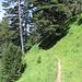 Il sentiero è sempre ben segnato e privo di difficoltà.