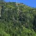 In Ennenda, schöne Grüntöne. Oberhalb des Seilbahnmastens befindet sich die Bergstation.