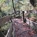 steile Treppen führen zum Tobelgrund