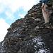 die weltbeste Begleiterin im Klettersteig