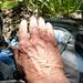Carugo - das kommt davon, wenn man ohne Handschuhe arbeitet